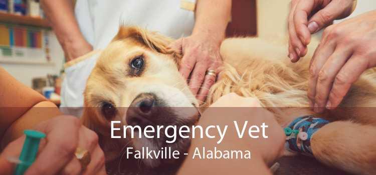 Emergency Vet Falkville - Alabama