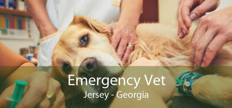 Emergency Vet Jersey - Georgia