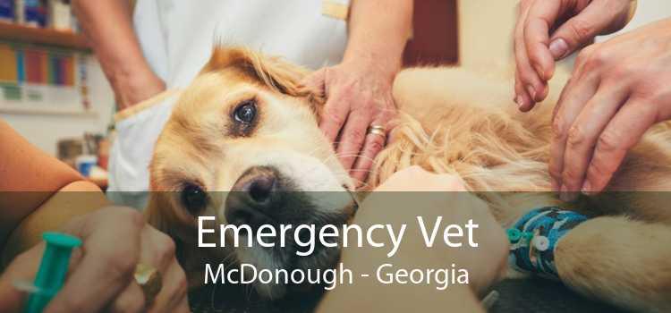 Emergency Vet McDonough - Georgia
