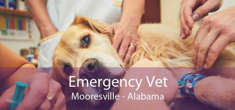 Emergency Vet Mooresville - Alabama
