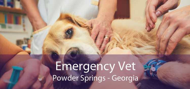 Emergency Vet Powder Springs - Georgia
