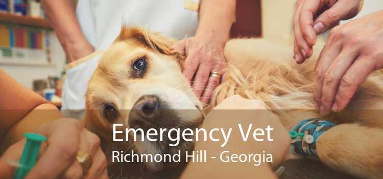 Emergency Vet Richmond Hill - Georgia