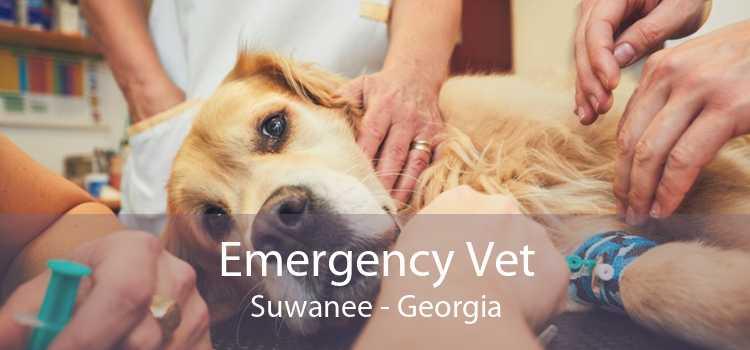Emergency Vet Suwanee - Georgia