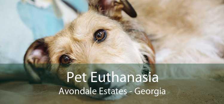 Pet Euthanasia Avondale Estates - Georgia