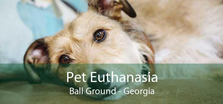 Pet Euthanasia Ball Ground - Georgia