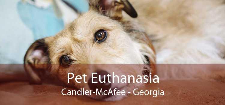 Pet Euthanasia Candler-McAfee - Georgia