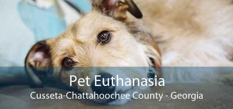 Pet Euthanasia Cusseta-Chattahoochee County - Georgia