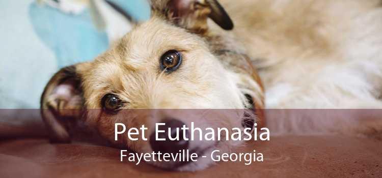 Pet Euthanasia Fayetteville - Georgia
