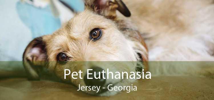 Pet Euthanasia Jersey - Georgia