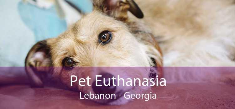 Pet Euthanasia Lebanon - Georgia