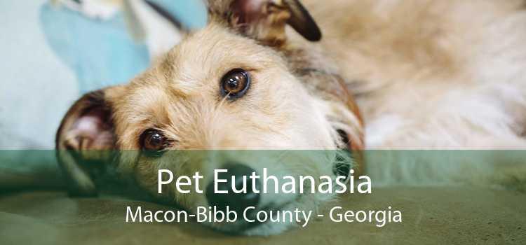 Pet Euthanasia Macon-Bibb County - Georgia