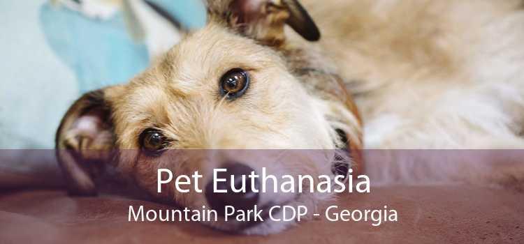 Pet Euthanasia Mountain Park CDP - Georgia