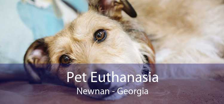 Pet Euthanasia Newnan - Georgia