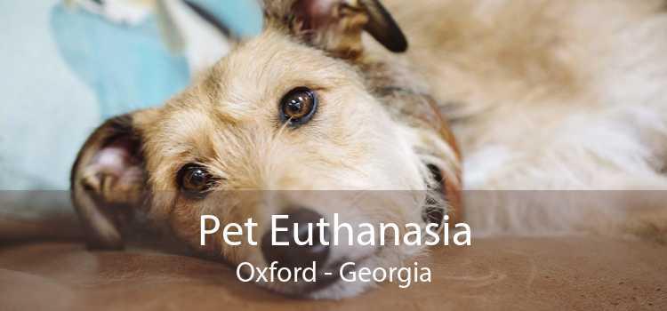 Pet Euthanasia Oxford - Georgia