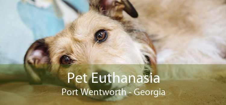 Pet Euthanasia Port Wentworth - Georgia