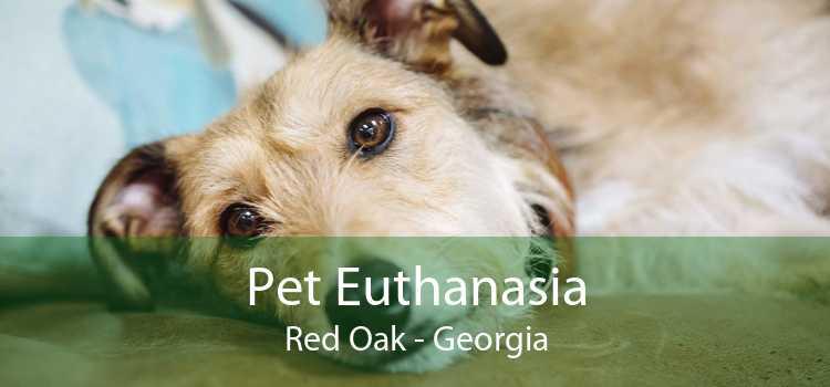 Pet Euthanasia Red Oak - Georgia