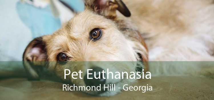 Pet Euthanasia Richmond Hill - Georgia