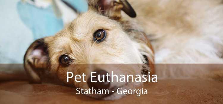 Pet Euthanasia Statham - Georgia