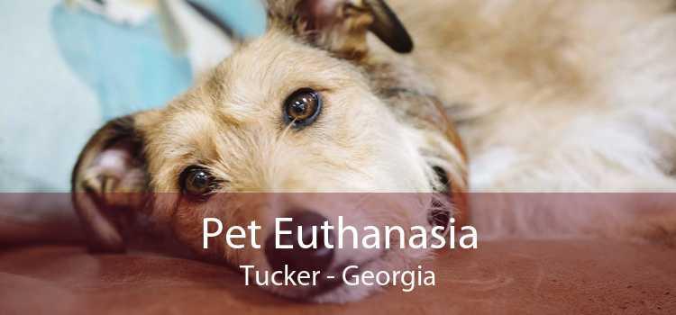 Pet Euthanasia Tucker - Georgia