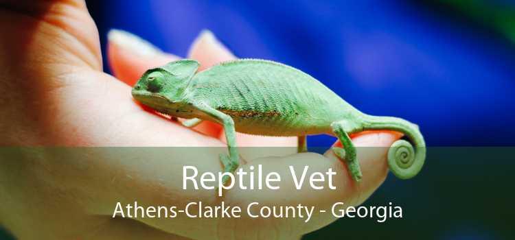 Reptile Vet Athens-Clarke County - Georgia