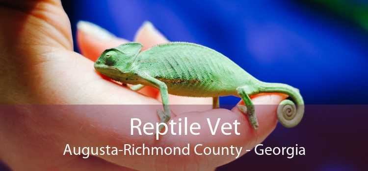 Reptile Vet Augusta-Richmond County - Georgia