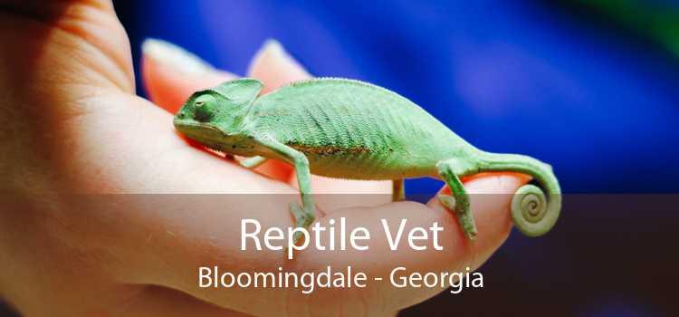 Reptile Vet Bloomingdale - Georgia