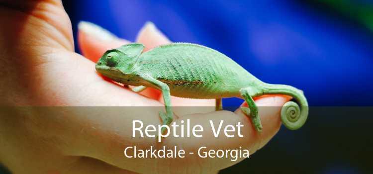 Reptile Vet Clarkdale - Georgia
