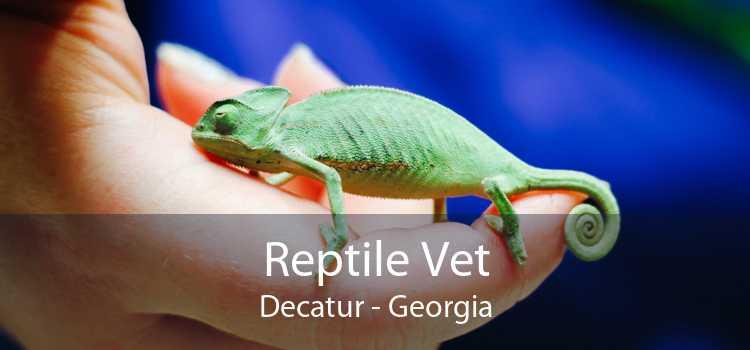 Reptile Vet Decatur - Georgia