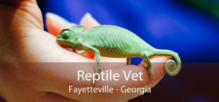 Reptile Vet Fayetteville - Georgia