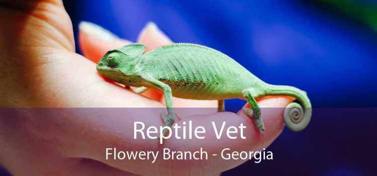 Reptile Vet Flowery Branch - Georgia