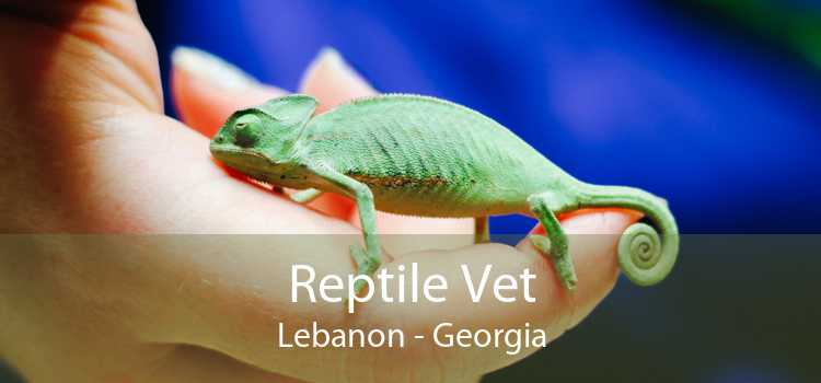 Reptile Vet Lebanon - Georgia