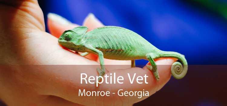 Reptile Vet Monroe - Georgia