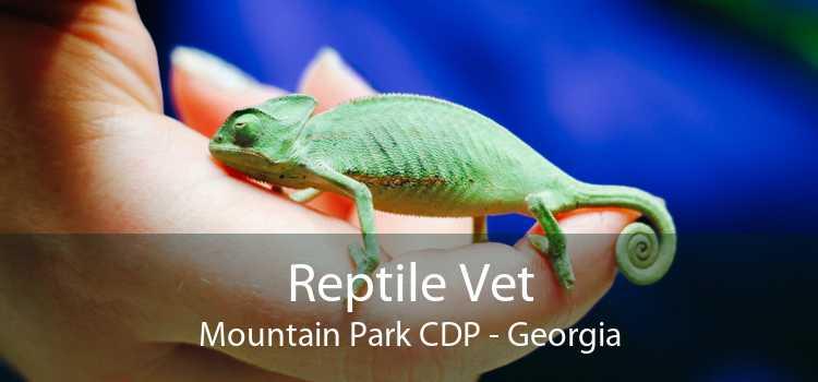 Reptile Vet Mountain Park CDP - Georgia