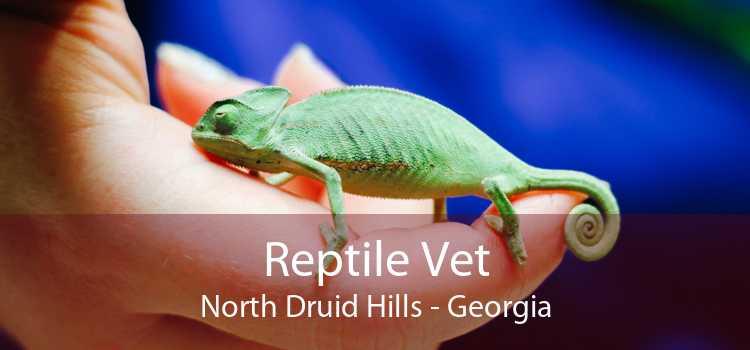 Reptile Vet North Druid Hills - Georgia
