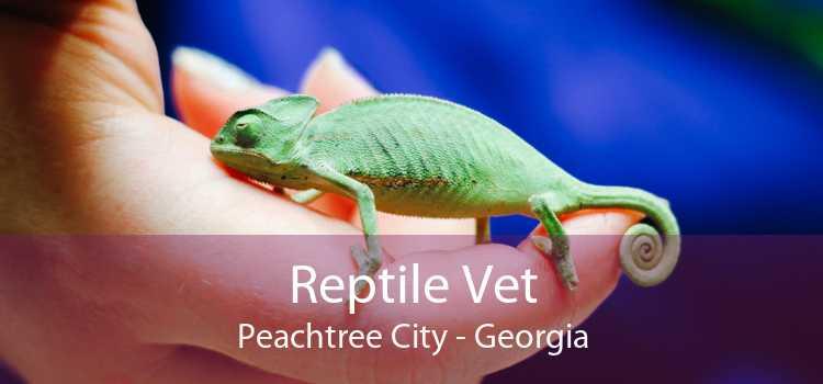 Reptile Vet Peachtree City - Georgia