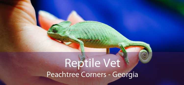 Reptile Vet Peachtree Corners - Georgia