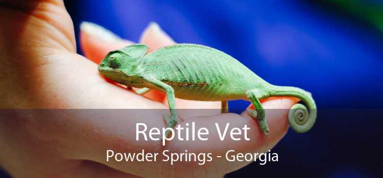 Reptile Vet Powder Springs - Georgia