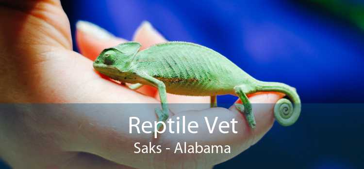 Reptile Vet Saks - Alabama