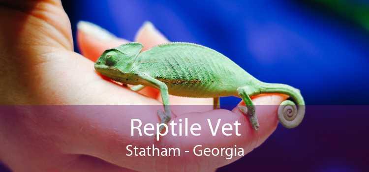 Reptile Vet Statham - Georgia