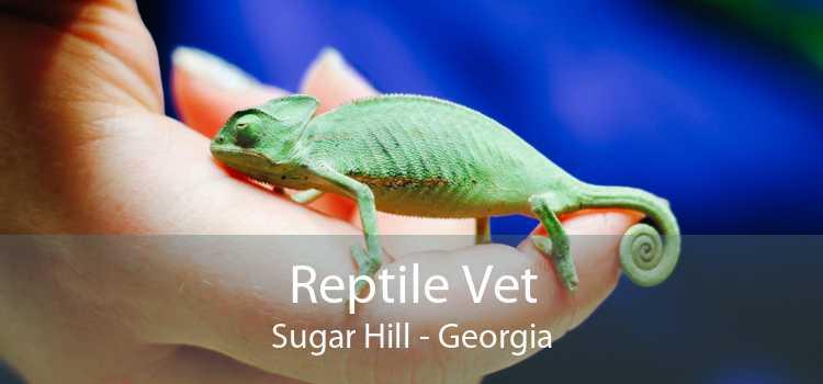 Reptile Vet Sugar Hill - Georgia