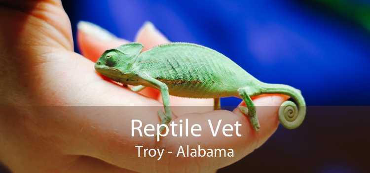 Reptile Vet Troy - Alabama