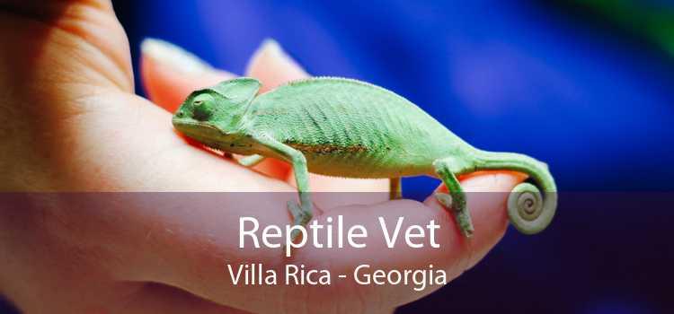 Reptile Vet Villa Rica - Georgia