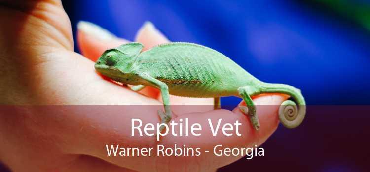 Reptile Vet Warner Robins - Georgia
