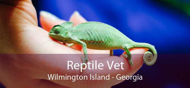Reptile Vet Wilmington Island - Georgia