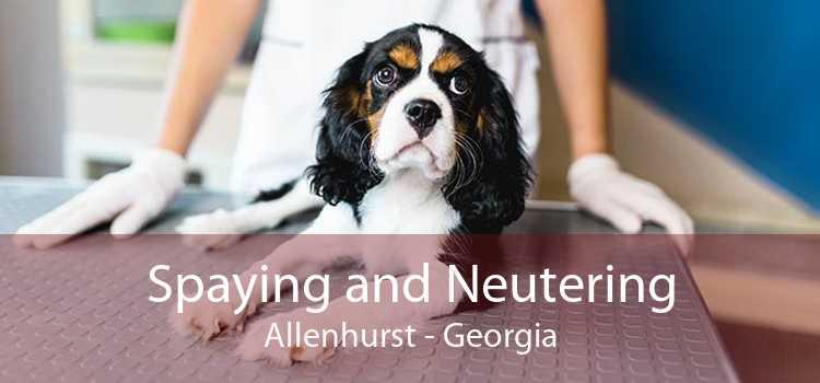 Spaying and Neutering Allenhurst - Georgia