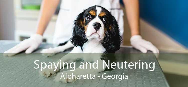 Spaying and Neutering Alpharetta - Georgia