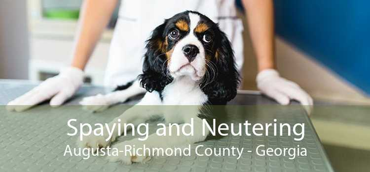 Spaying and Neutering Augusta-Richmond County - Georgia