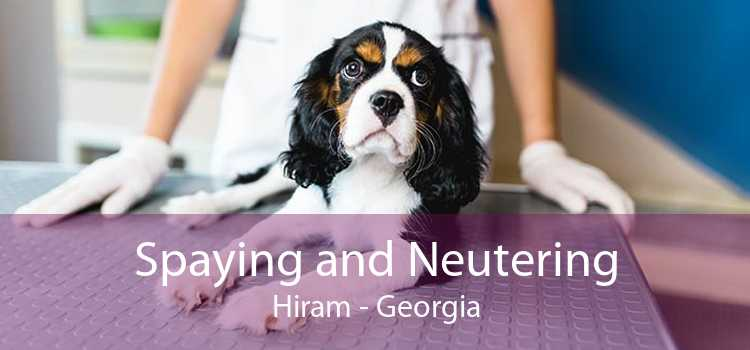 Spaying and Neutering Hiram - Georgia