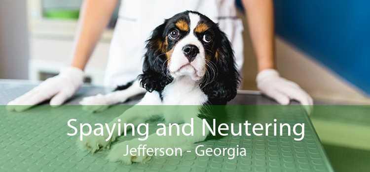 Spaying and Neutering Jefferson - Georgia