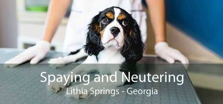 Spaying and Neutering Lithia Springs - Georgia